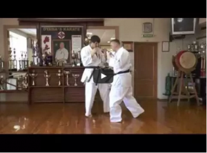 Andrey Stepin demos Kyokushin low kick