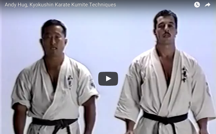 Andy Hug, Kyokushin Karate Kumite Techniques