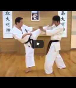 Dynamic Kyokushin Kicks From Shihan Daigo Oishi