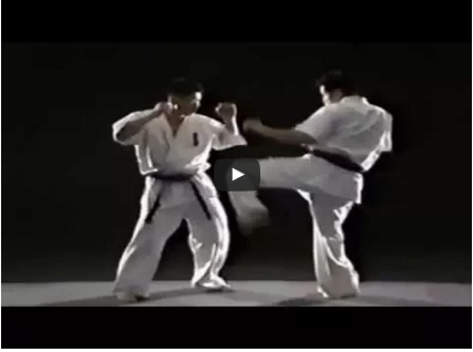 Kyokushin Karate Fight Techniques