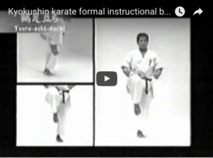 Kyokushin karate formal instructional by Kenji Midori