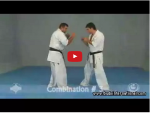 Kyokushinkai Training with Shihan Jesús Talán