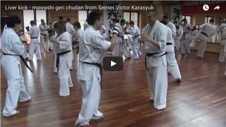 Liver kick - mawashi geri chudan from Sensei Victor Karasyuk
