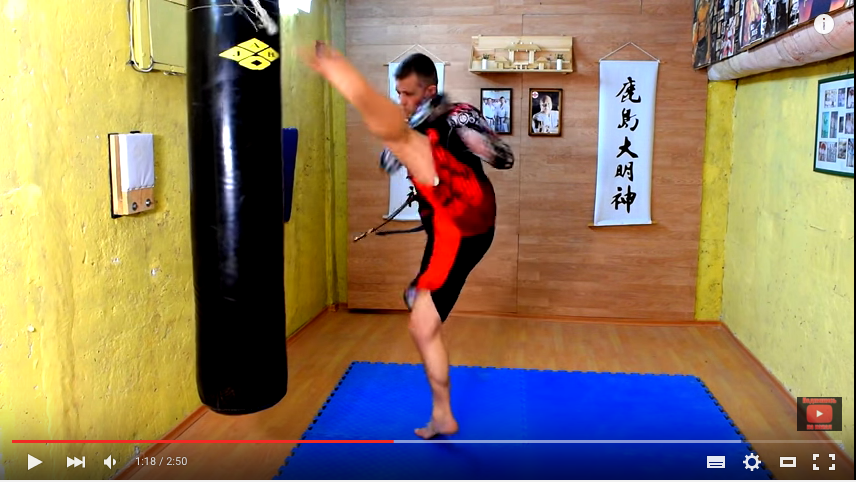 Combination Mawashi High Kick, Punches and Low Kick, with Dmitriy Solodovnikov