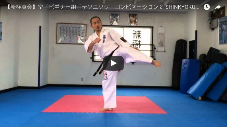 Shinkyokushin Karate Kumite Techniques - Combinations
