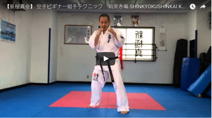 Shinkyokushin Karate KumiteTraining - Strikes