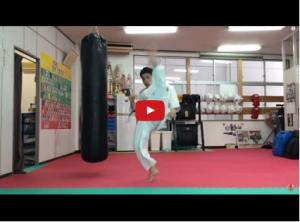 Shinkyokushin Uchi Mawashigeri