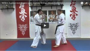 Sudden kick Ushiro geri – with Shihan Alexei Gorokhov, Lesson 10