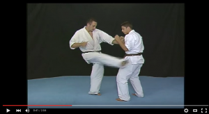 Valeri Dimitrov shows Gedan soto kakato geri