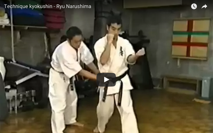 kyokushin Technique - Ryu Narushima