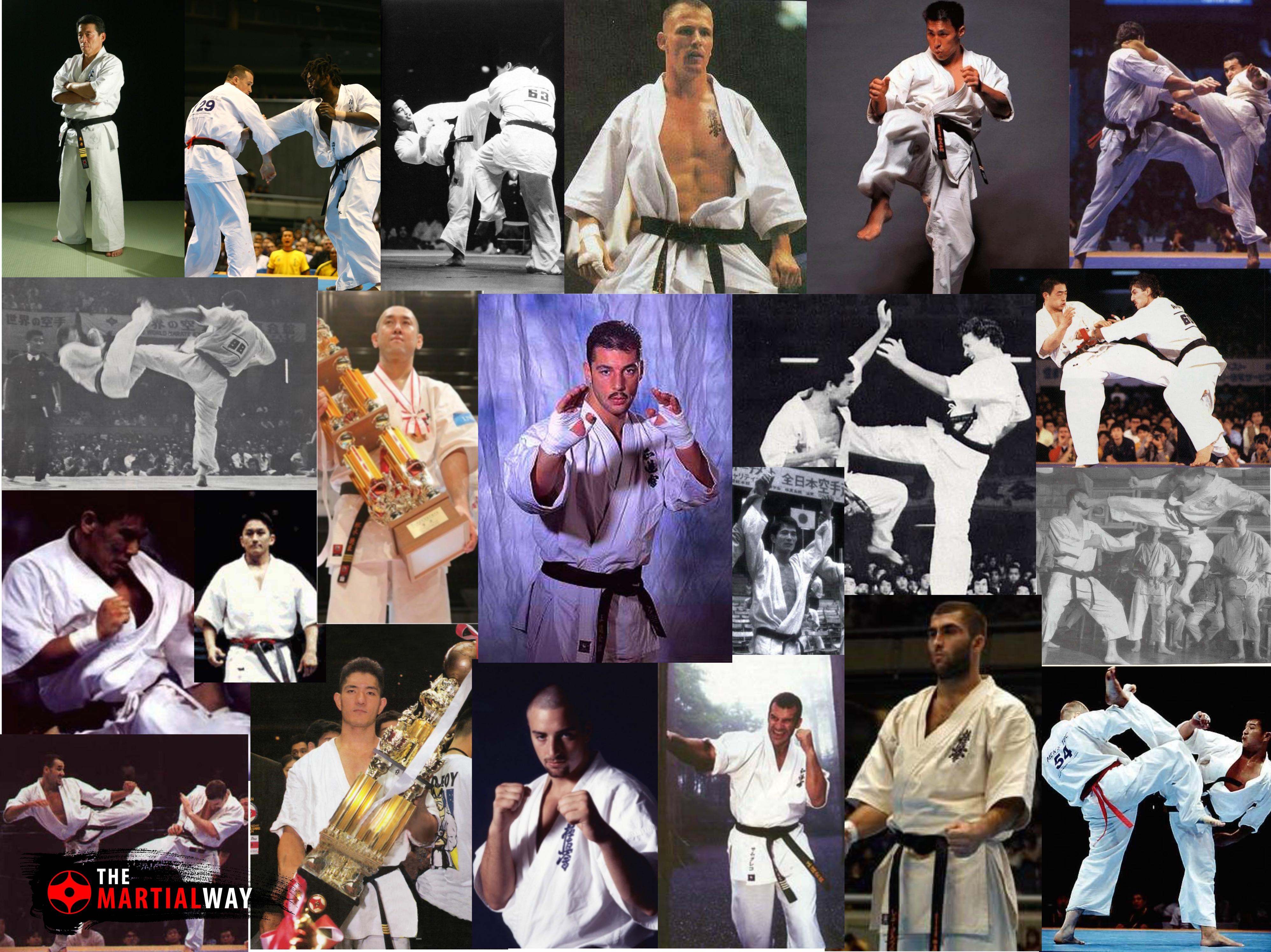 Kyokushin Karate Kata Videos