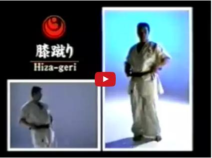Kyokushin Kihon – Basic Kicks