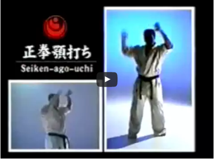 Kyokushin Kihon Geiko – Basic Strikes & Blocks