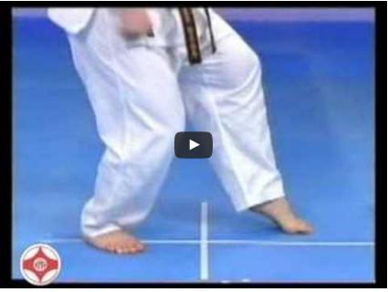 Kyokushin Stances