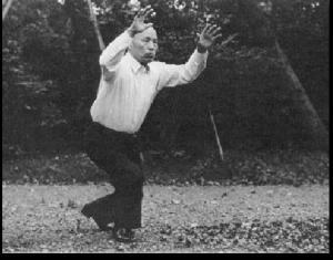 Sawai Sensei showing his Taikiken Hai exercise in Meiji Jiro park, Tokyo, Japan