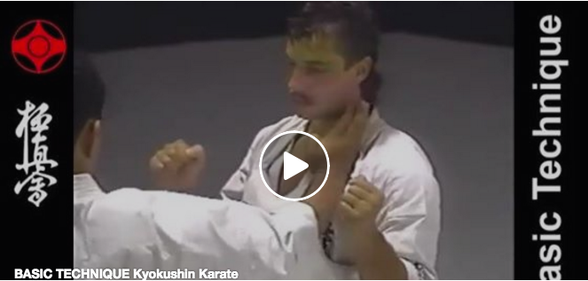 Basic Techniques of Kyokushin Karate