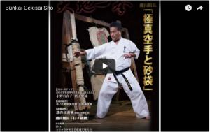 Kyokushin Gekisai Sho Kata and Bunkai