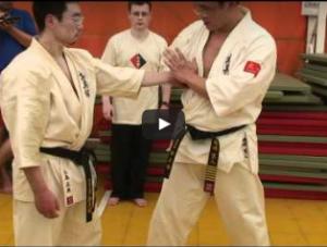 Kyokushin Saifa Kata Bunkai, with Shihan Hiroto Okazaki