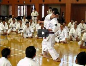 Shihan Hiroto Okazaki demonstrates application of the kata's techniques
