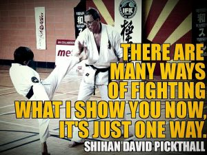 Shihan-David-Pickthall-quote