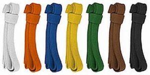 kyokushin-belt-colors
